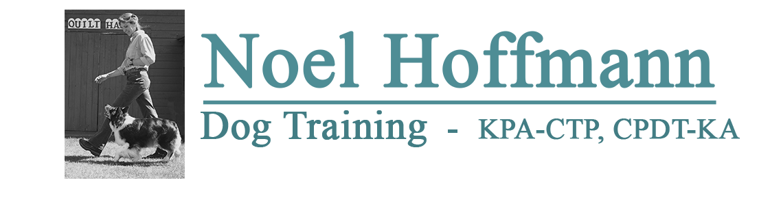 Noel Hoffmann Dog Training